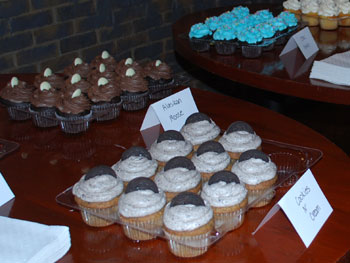 Cupcakes served at the announcement of HealthMedias acquisition by Johnson & Johnson.