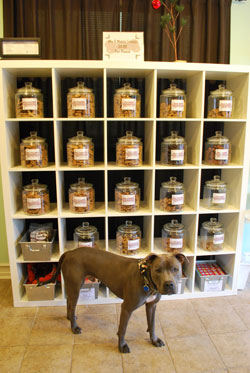 Bleux guards the shelves of biscuits, with scents like pizza and
