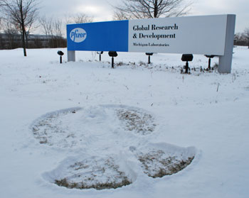 Pfizer bought by UM: Snow Angel