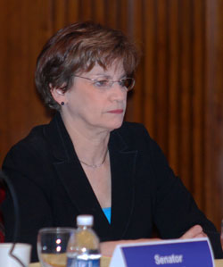 State Sen. Liz Brater (D-Ann Arbor) is a member of the Senate Higher Education Subcommittee Hearing and attended Fridays session in Ann Arbor.