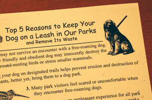 The city prints these cards to spread a message about keeping dogs on a leash in Ann Arbor's parks.