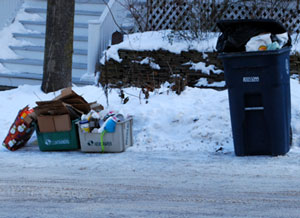Trash and Recycling in Ann Arbor