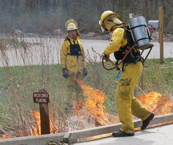A controlled burn at Argo Nature Area