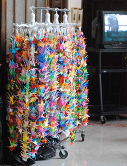 Paper cranes from Avalon Housing