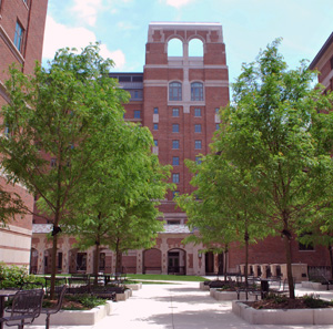 Inner courtyard at North Quad
