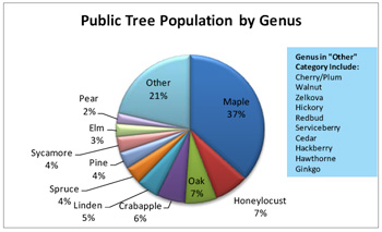 Chart of tree diversity in Ann Arbor