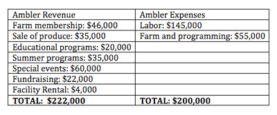 Finances for Ambler Farm