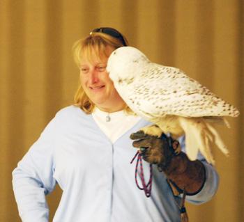 Francie Krawcke with a snowy owl