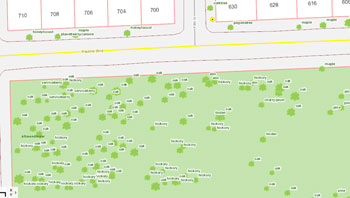 Screenshot from the city of Ann Arbor's online tree inventory, showing a preponderance of oak trees in the northern part of Allmendinger Park.