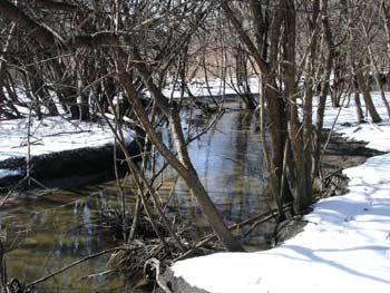 Miller Creek, Washtenaw County parks and recreation, The Ann Arbor Chronicle