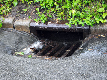 Ann Arbor city storm drain in action. (Chronicle file photo)