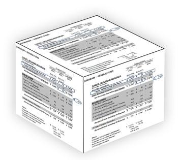 FY 2014 Ann Arbor budget box
