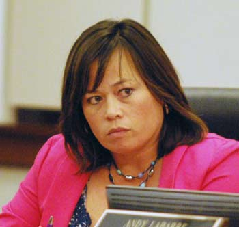 Alicia Ping, Washtenaw County board of commissioners, The Ann Arbor Chronicle