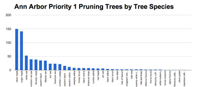 Trees by species
